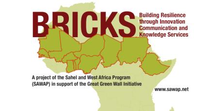 SAWAP-BRICKS-africa-800x400-2